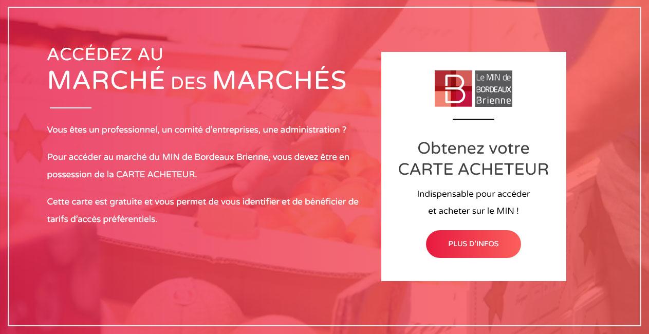 Vidéo en fond dans web design du site du MIN de Bordeaux